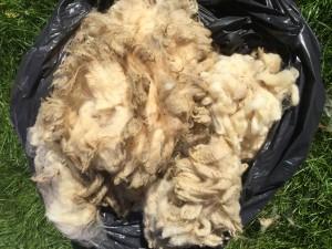Muckier fleece